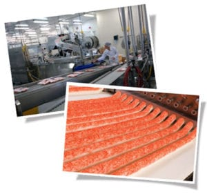 trans ocean seafood processing
